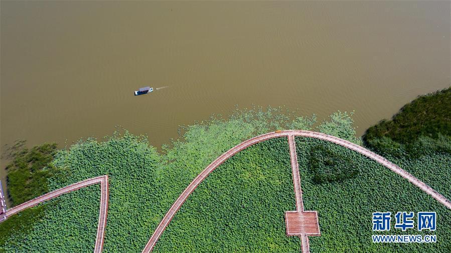 (在习近平新时代中国特色社会主义思想指引下——新时代新作为新篇章·习近平总书记关切事·图文互动)(8)绿色映底蕴,山水见初心——生态优先、绿色发展持续造福群众美好生活