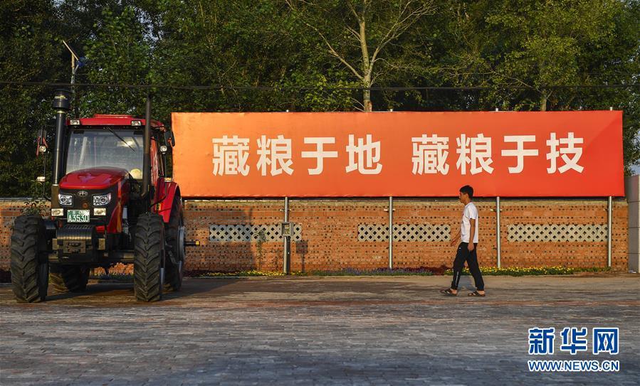 """(在习近平新时代中国特色社会主义思想指引下——新时代新作为新篇章·习近平总书记关切事·图文互动)(3)为黑土加""""油""""——""""耕地中的大熊猫"""",我们这样保护"""