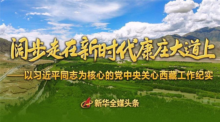 以习近平同志为核心的党中央关心西藏工作纪实