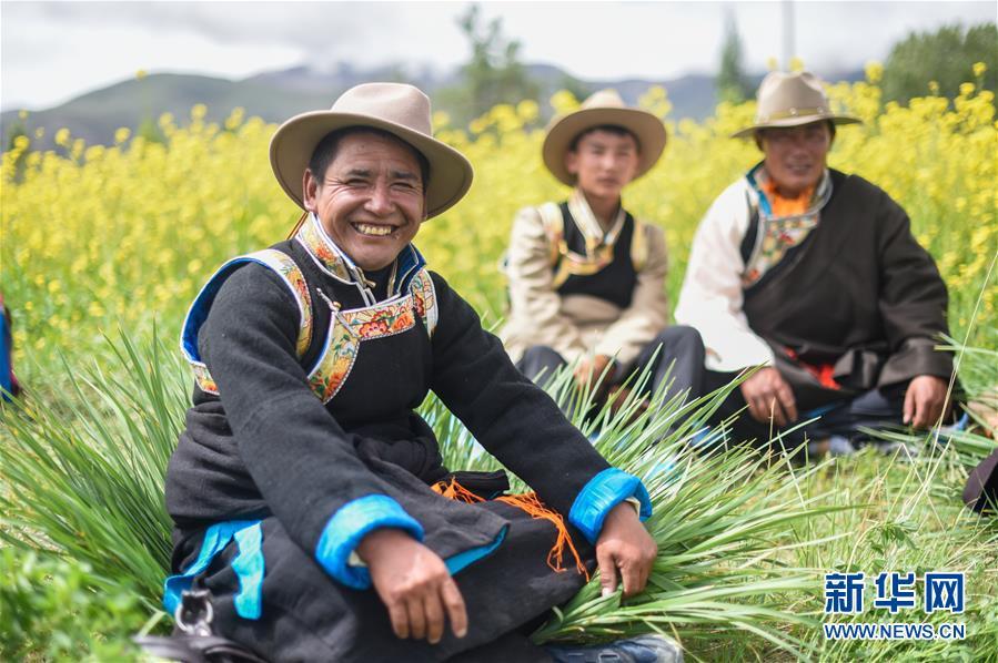 (新华全媒头条・图文互动)(5)阔步走在新时代康庄大道上――以习近平同志为核心的党中央关心西藏工作纪实