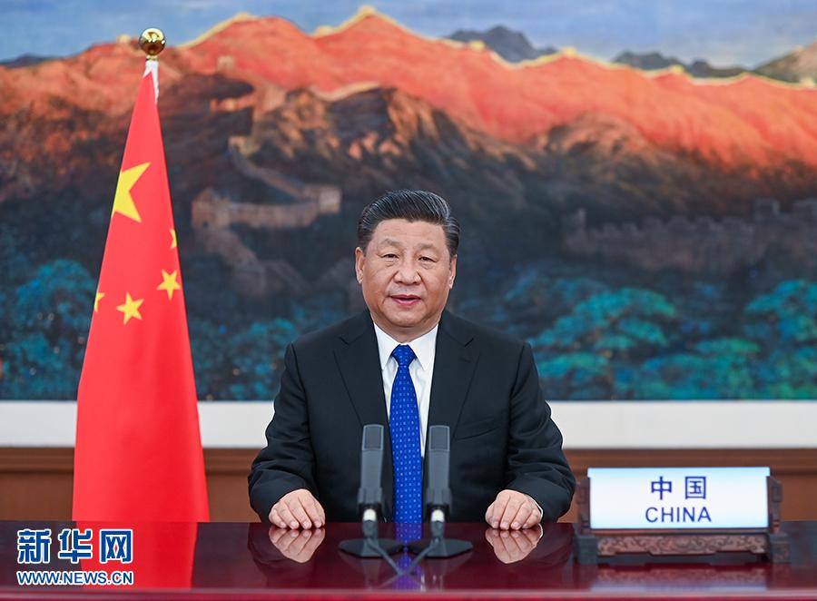 """习近平领导中国战""""疫"""""""