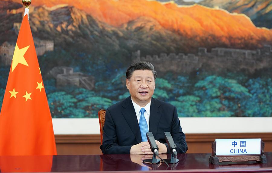 南阳市卧龙区喜迎2020年中国农民丰收节