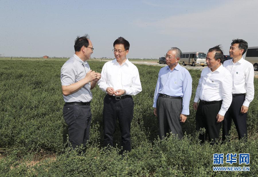 韩正在山东调研:加强生态保护治理 加大科技创新力度