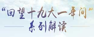 """""""回望十九大一年間""""係列解讀"""