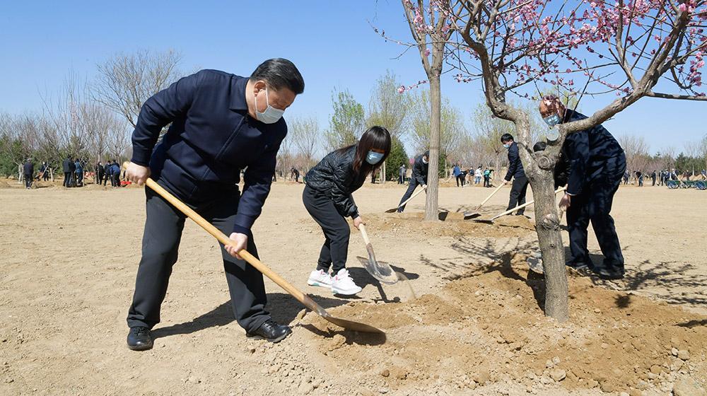 黨和國家領導人參加首都義務植樹活動