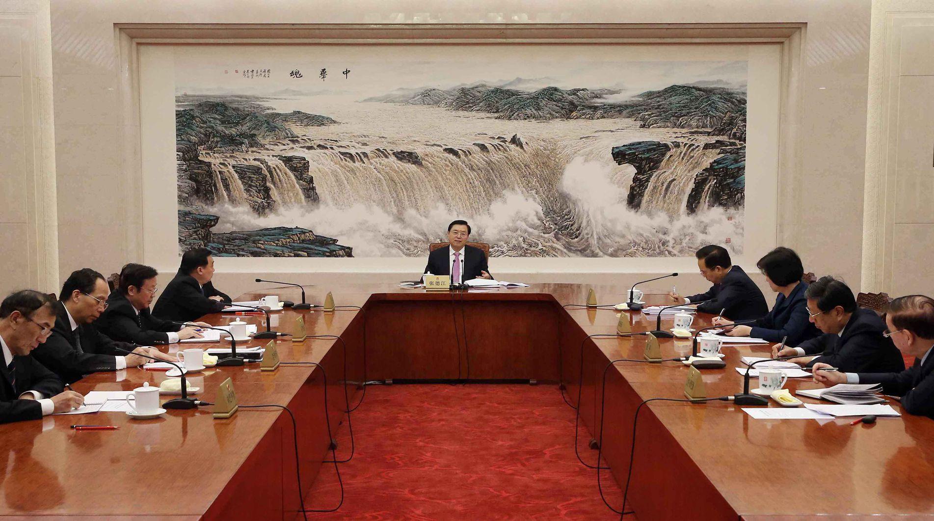 张德江主持召开中共全国人大常委会党组会议并讲话