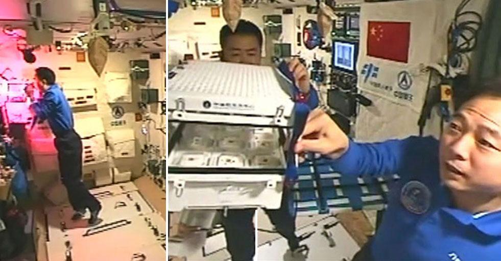 """中��人首次在太空��""""菜�r"""""""