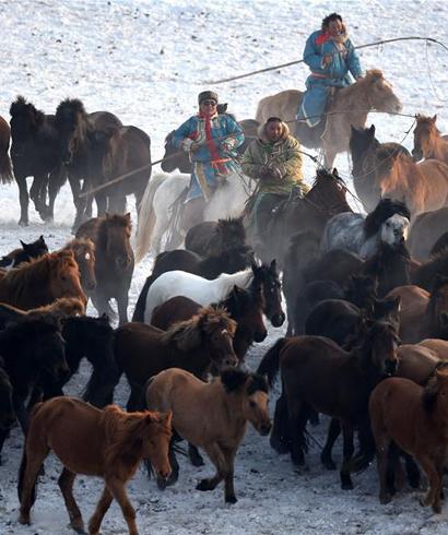 冰雪草原 激情套马