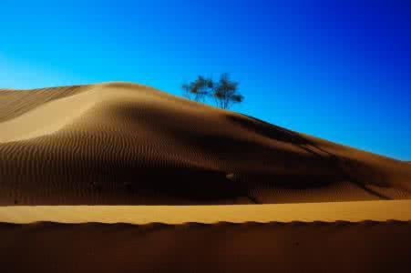 内蒙古阿拉善:沙漠旅游让贫瘠地变成聚宝盆