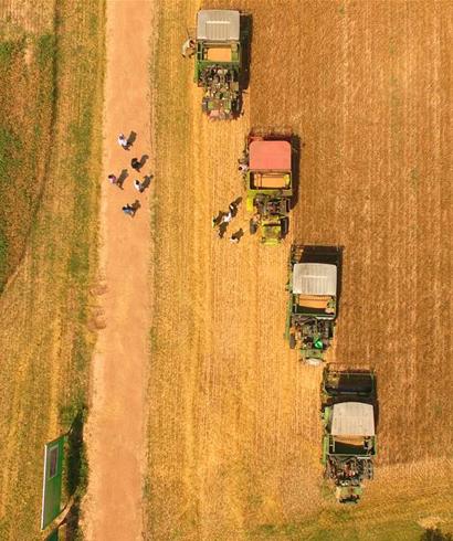 内蒙古成为我国重要商品粮输出基地