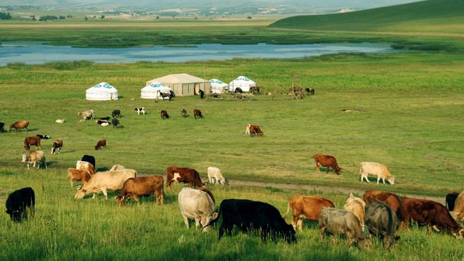 一起来说说你对内蒙古的印象