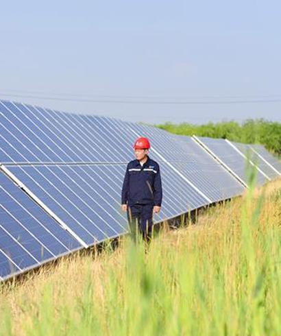 内蒙古荒漠化和沙化土地减少面积居全国首位
