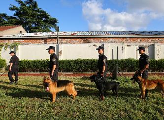 """探班上海警犬訓練基地 個個都是英勇""""好漢"""""""