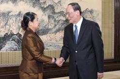 王岐山會見柬埔寨副首相梅森安