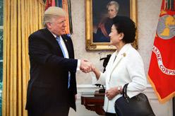 美國總統特朗普會見劉延東