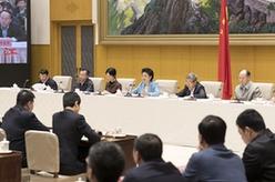 劉延東出席貫徹落實《關于深化教育體制機制改革的意見》電視電話會議