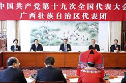李克強參加黨的十九大廣西壯族自治區代表團討論