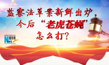 """監察法草案新鮮出爐 今後""""老虎蒼蠅""""怎麼打?"""