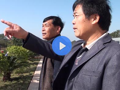 """李文傾:""""集體蠶房""""抱團發展 鄉村振興有盼頭"""