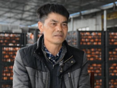 """馬代遠:農村電商讓小柑橘成致富大""""法寶"""""""