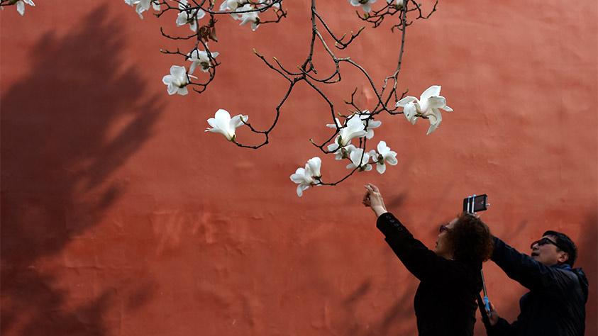 最濃是這中國紅——北京市西城區弘揚紅墻意識深化改革發展紀實