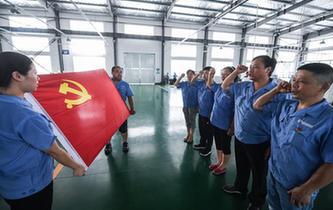 浙江臨安:基層黨建助力鄉村建設