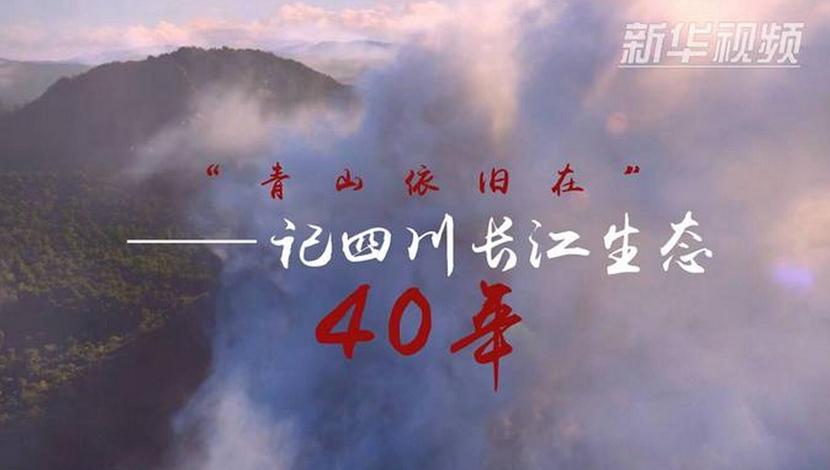 """""""青山依旧在""""——记四川长江生态四十年"""