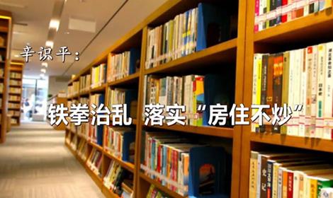 """辛識平:鐵拳治亂,落實""""房住不炒"""""""