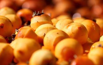 柿子深加工促增收