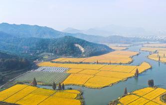 寧波:霧漫東錢湖