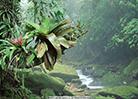 熱帶雨林國家公園體制試點區佔海南陸域面積1/7