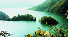 甘肅白水江國家級自然保護區