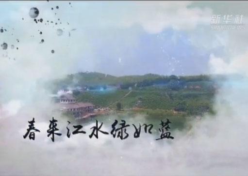 【音畫坊】春天的答卷(上)