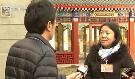 聚焦中國兩會:全國政協委員 謀良策諫真言