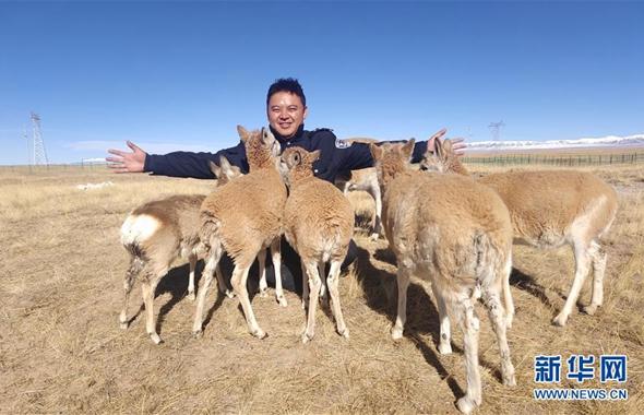 藏族巡山隊員龍周才加:把青春留在可可西裏