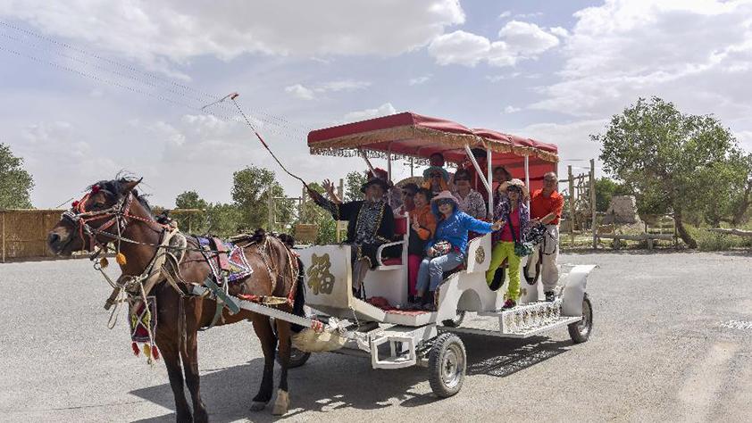 新疆尉犁:大漠風情引遊人