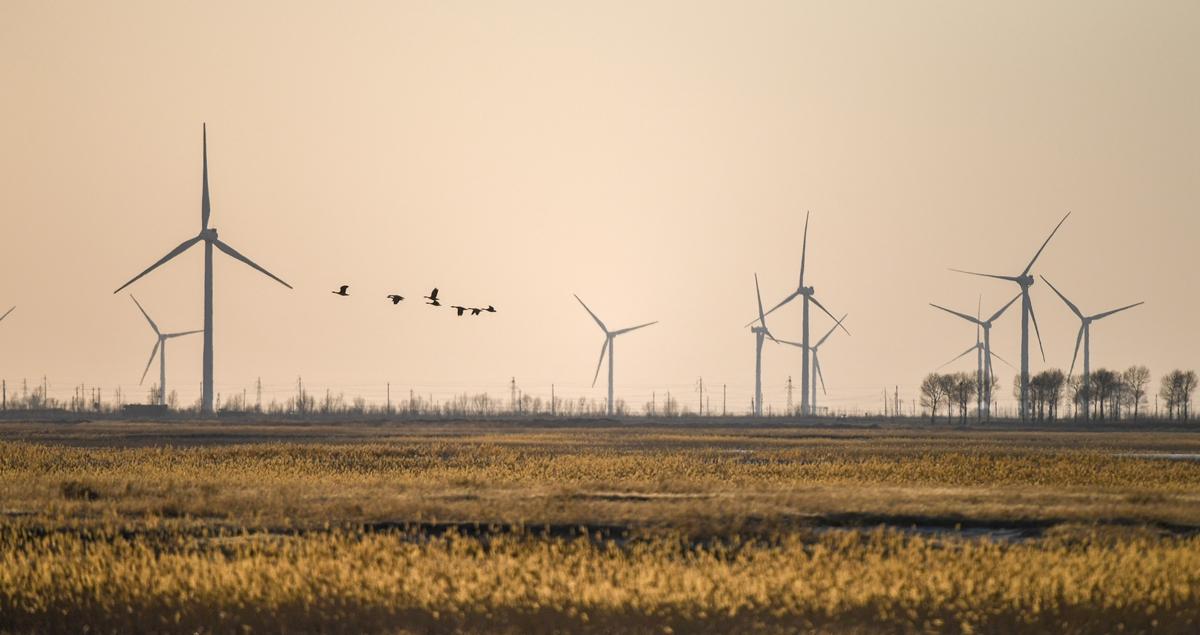 吉林分区域推进生态保护 让绿色发展底气更足