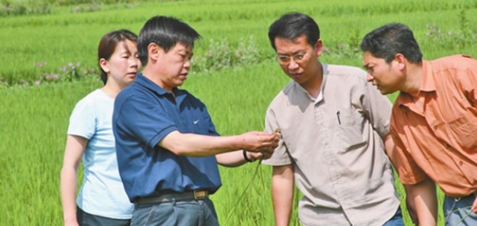 朱有勇在田間講解作物病蟲害防治