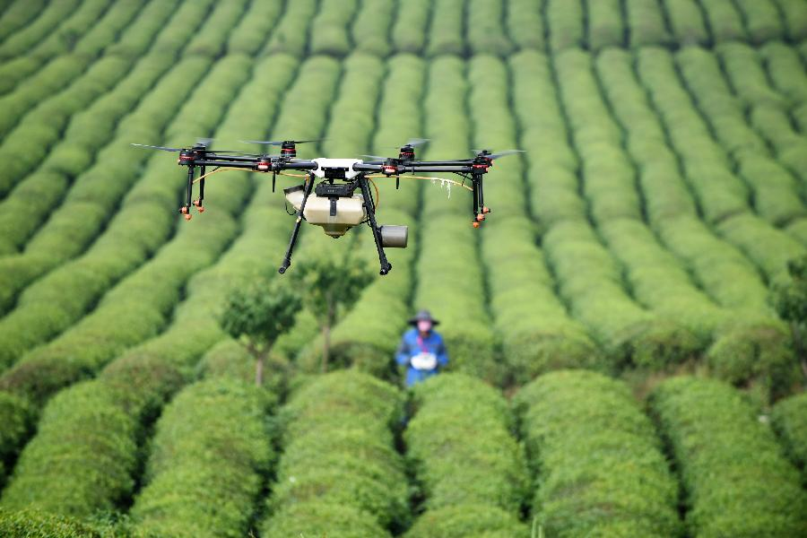 貴州推進農村産業結構調整觀察
