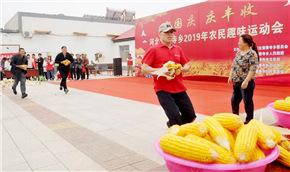 农民运动会 喜庆丰收节