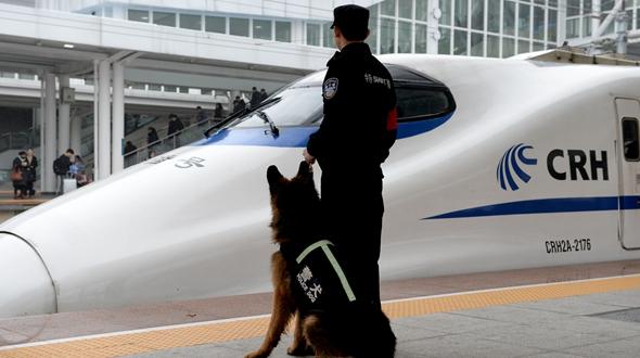 """警犬""""神威"""" 護航春運"""