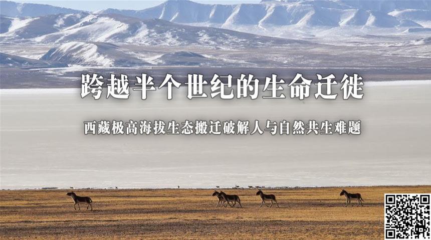 跨越半個世紀的生命遷徙——西藏極高海拔生態搬遷破解人與自然共生難題
