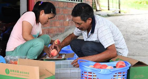 重庆万州:产业助脱贫