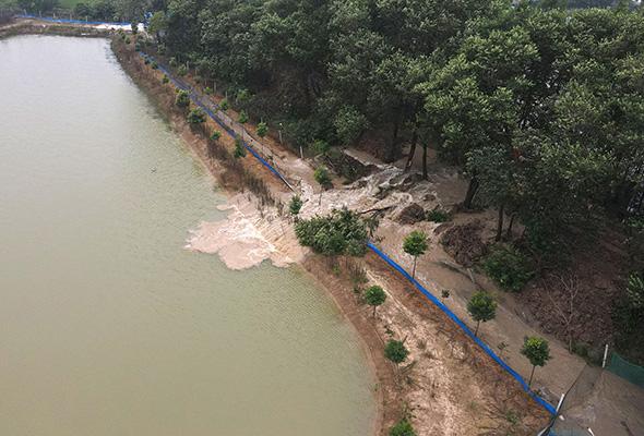 安徽肥西蔣口河聯圩蓄水分洪