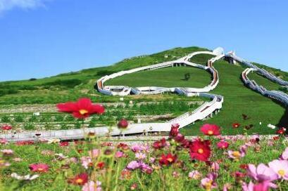 北疆亮麗風景線的綠色生態新圖景