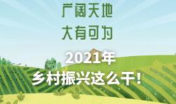 2021年乡村振兴这么干!