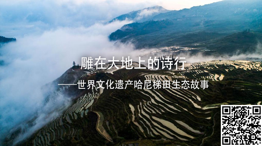 雕在大地上的詩行——世界文化遺産哈尼梯田生態故事