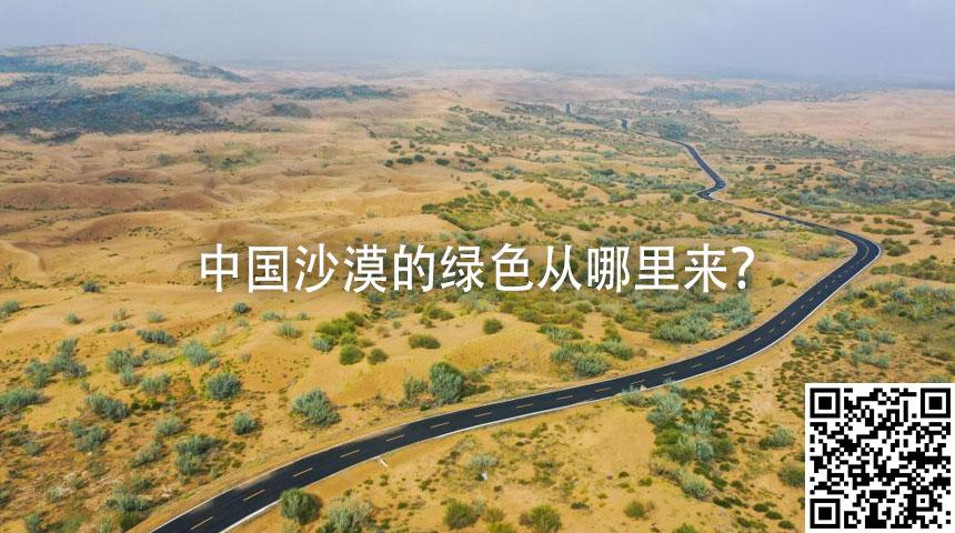 中國沙漠的綠色從哪裏來?
