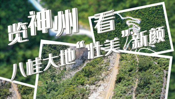 廣西:走好生態脫貧路 讓荒山披綠窮嶺生金