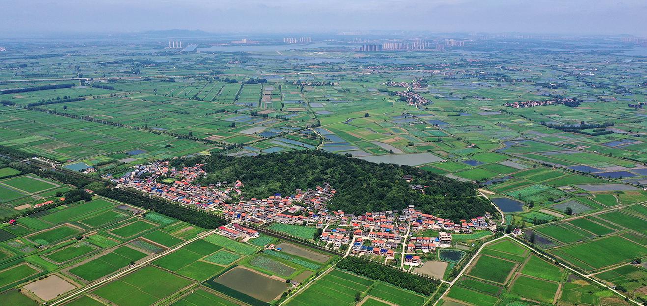 中国式现代化的乡村探索——来自10个中国乡村的一线观察